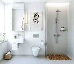 shower stall ideas for a small bathroom bathroom shower stall ideas northlight co