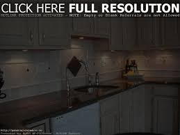 kitchen cabinets with sink sink storage door rack large size of