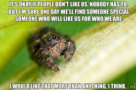 Cute Spider Meme - jumping spider got cute