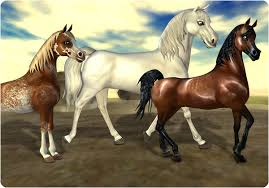 hairstyles for horses new beautiful horses have arrived star stable