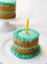 mini funfetti birthday cakes best friends for frosting
