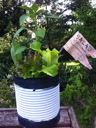 Container Vegetable Gardening Ideas by Diy Recycled Containers Painted With Black And White Color For