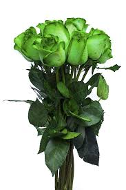 tinted green roses