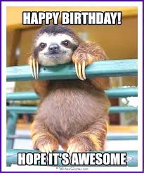 Happy Birthday Meme - happy birthday memes with funny cats dogs and cute animals happy