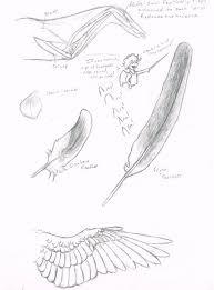 tutorials on folded wings deviantart
