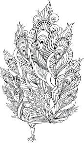 peacock coloring pages peacock coloring pages for adults page vector