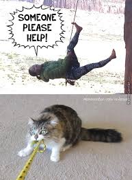 Rock Climbing Memes - climber memes best collection of funny climber pictures