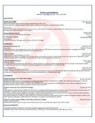 sample cto resume cto cover letter hockey resume