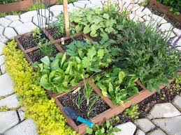 square foot vegetable garden layout easy vegetable garden fence garden easy vegetable garden ideas
