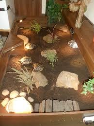In Door by Indoor Tortoise Enclosure Google Search Aminals Pinterest