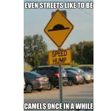 Speed Bump Meme - isn t it a speed bump by ohstopitsyou meme center