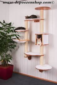 Wall Shelves For Cats 122 Best Cat Trees Images On Pinterest Cat Trees Cat Stuff And