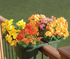 deck rail planters and how they can help you to transform your