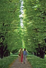 Botanical Gardens Niagara Falls Niagara Falls From All Angles