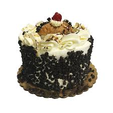 gourmet cakes 6 gourmet cakes coccadotts cake shop custom cake cupcake