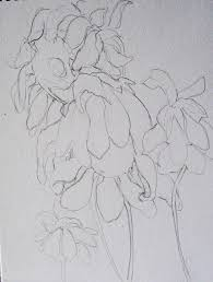 pictures drawing start pencil picture drawing art gallery