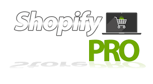 dmca notice shopify store pro