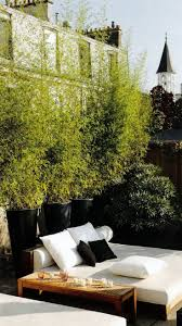 260 best contemporary gardens images on pinterest landscaping