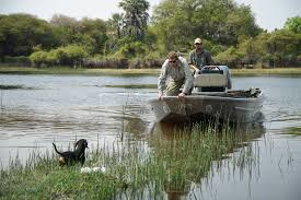 safari brothers u2013 new series premieres friday oct 14 on nat geo
