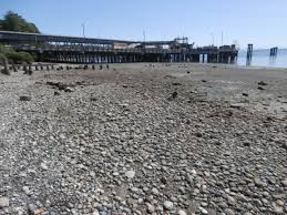 eagle harbor sewer beach mains rehabilitation bainbridge island