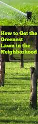 Lawn And Landscape by Tips And Tricks For Getting The Greenest Lawn In The Neighborhood