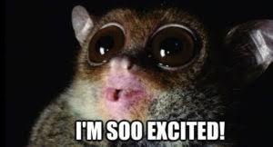 So Excited Meme - excited meme huge list of so excited meme