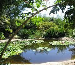 Quail Botanical Gardens Encinitas California San Diego Botanic Garden Encinitas 2018 All You Need To