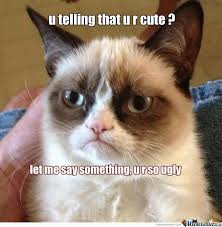 Cute No Meme - grumpy cat no cute by recyclebin meme center