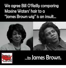 Bill Oreilly Meme - we agree bill o reilly comparing maxine waters hair to a james
