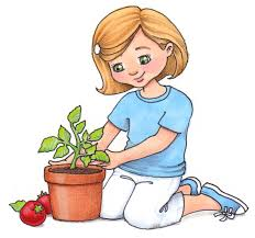 planting tree clipart 17