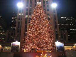 nyc rockefeller center christmas tree goes green inhabitat