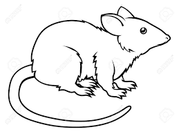 an illustration of a stylised rat perhaps a rat tattoo royalty
