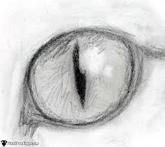 how to draw a cat eye finalprodigy com