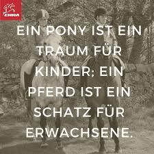 pferdesprüche 17 best images about pferdesprüche on its always