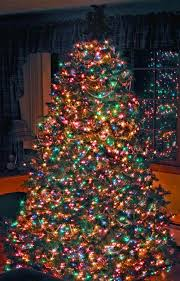 how to fix xmas lights on tree 425 best christmas tree extravaganza images on pinterest xmas