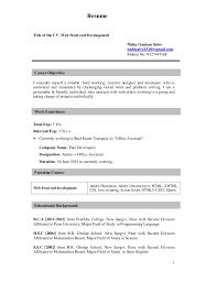 nisha salve resume