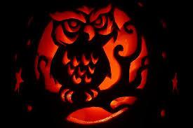 43 no carve pumpkin decorating ideas