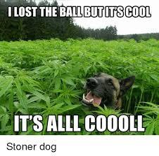 Stoned Dog Meme - 25 best memes about stoner dog stoner dog memes