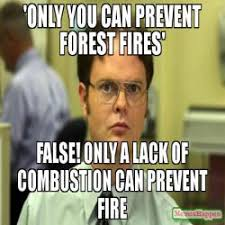 Only You Can Prevent Forest Fires Meme - you turned your in your research paper in the dropbox false you