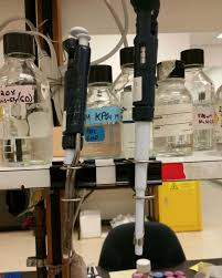 Biology Lab Bench Shared Results 25 Real Lab Hacks From Researchers Like You
