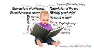 merry meaning of merry what does merry