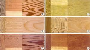 Hardwood Oak Flooring Wood Plant Tissue Britannica Com