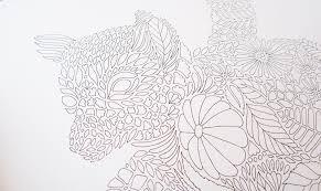 review millie marotta u0027s tropical wonderland colouring book
