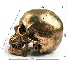 Halloween Skeletons Life Size by Skull Life Size Reviews Online Shopping Skull Life Size Reviews