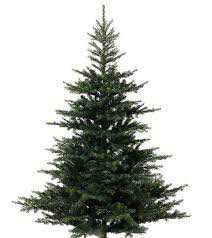 make your artificial pe christmas tree look just like a real