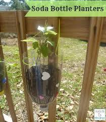 best 25 hanging flower pots ideas on pinterest potted plants