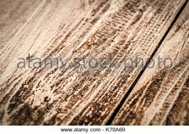 brown on the veranda floorboards up as background stock