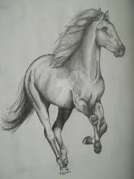running horse sketch by newfieartgirl on deviantart