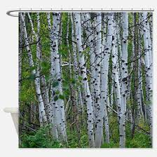 Tree Curtain Aspen Tree Shower Curtains Aspen Tree Fabric Shower Curtain Liner