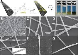 fabrication of conductive polymer nanofibers through swnt